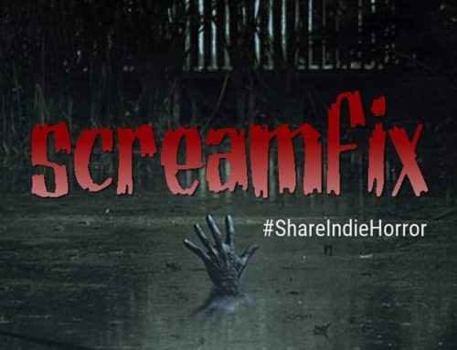 Screamfix Interview